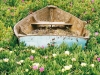 boat-in-flowers